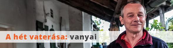 topelado_20170228_vanyai