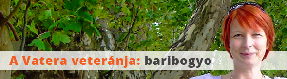 topelado_20170412_baribogyo